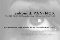 sehbund: pan-nox / exhibition poster / pan kunstforum / 59,4x84cm / 2003