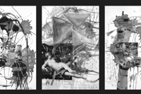 tasso / triptychon / mixed media/paper / each 70x100cm / 2012